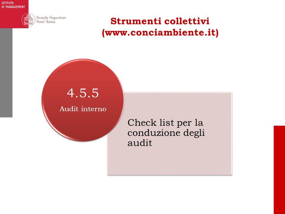Strumenti collettivi (www.conciambiente.it) Check list per la conduzione degli audit 4.5.5 Audit interno