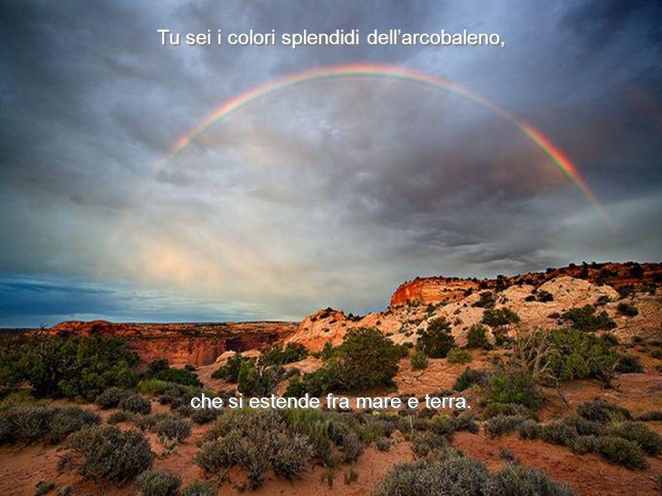 Tu sei i colori splendidi dellarcobaleno, che si estende fra mare e terra.