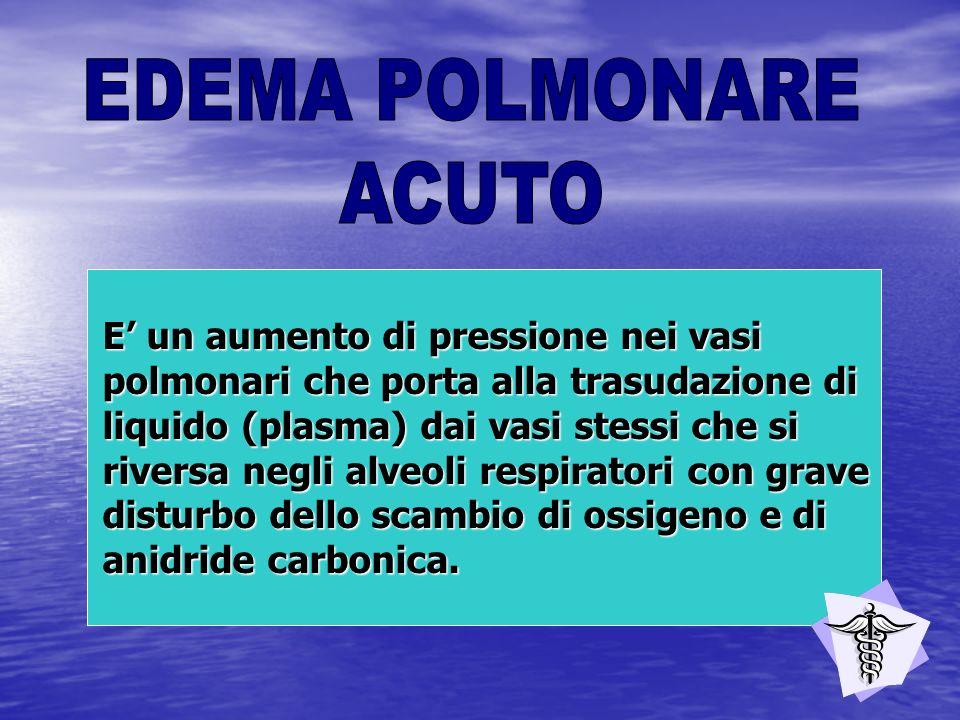 E un aumento di pressione nei vasi polmonari che porta alla trasudazione di liquido (plasma) dai vasi stessi che si riversa negli alveoli respiratori con grave disturbo dello scambio di ossigeno e di anidride carbonica.
