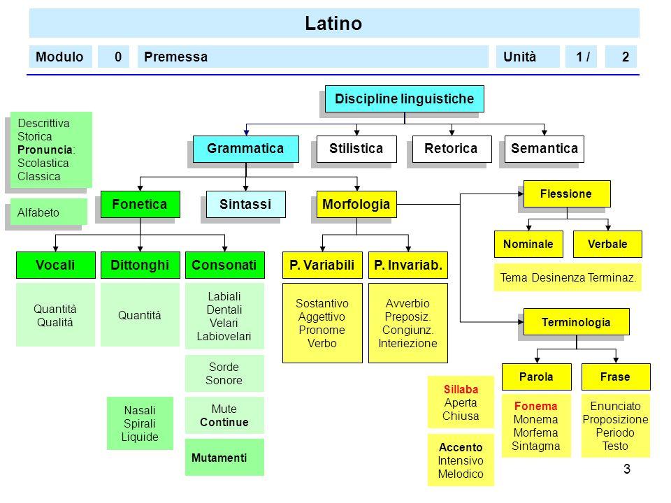 Latino Modulo/PremessaUnità 3 1 /20 Grammatica Fonetica Morfologia Sintassi Discipline linguistiche Stilistica Retorica Semantica Alfabeto ConsonatiP.