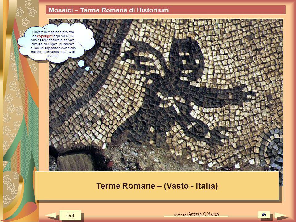 prof.ssa Grazia DAuria 45 Mosaici – Terme Romane di Histonium Terme Romane – (Vasto - Italia) Out Questa immagine è protetta da copyright e quindi NON