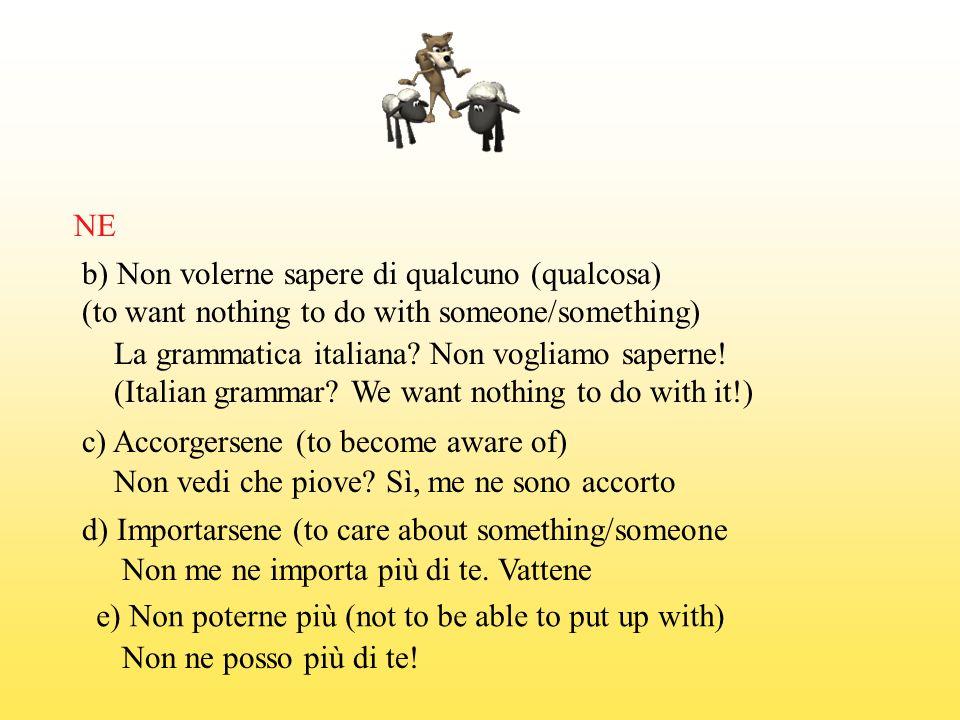 NE b) Non volerne sapere di qualcuno (qualcosa) (to want nothing to do with someone/something) La grammatica italiana? Non vogliamo saperne! (Italian