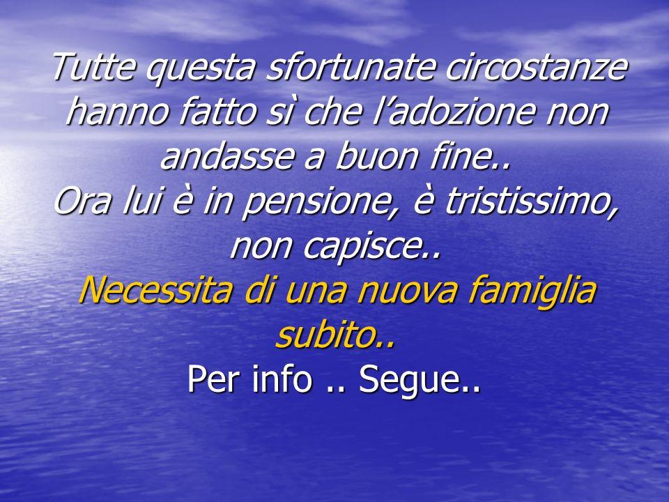 Associazione Onlus Canili Milano www.canilimilano.it e-mail info@canilimilano.it Tel 338/83.60.753 Conto Corrente Canili Milano IBAN IT 39 L 03268 01604 052847586490 CODICE FISCALE 974 6561 0158 www.canilimilano.it info@canilimilano.it www.canilimilano.it info@canilimilano.it
