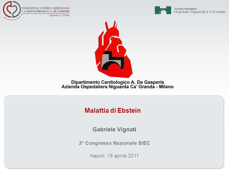 Malattia di Ebstein Napoli 15 aprile 2011 2° Congresso Nazionale SIEC Gabriele Vignati
