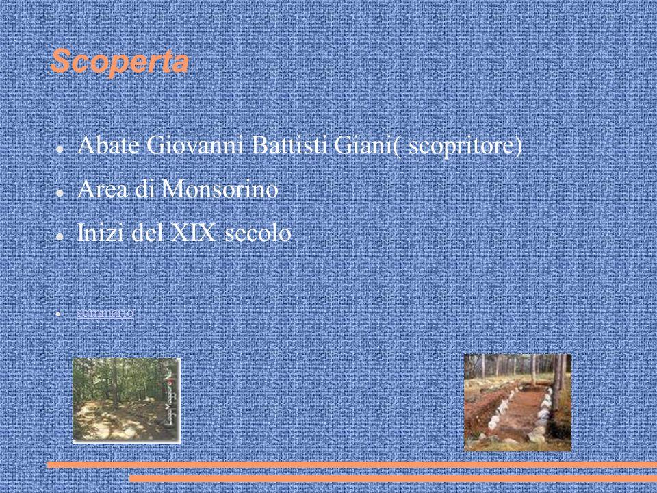 Scoperta Abate Giovanni Battisti Giani( scopritore) Area di Monsorino Inizi del XIX secolo sommario