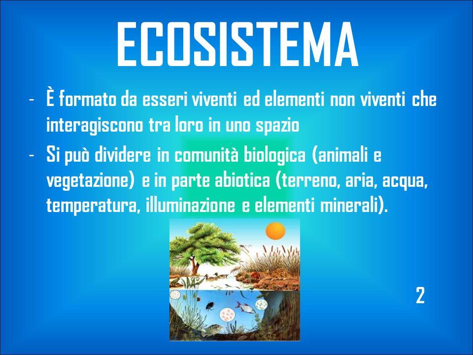 ECOSISTEMA - È formato da esseri viventi ed elementi non viventi che interagiscono tra loro in uno spazio - Si può dividere in comunità biologica (ani