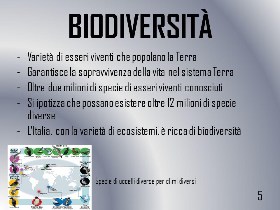 BIODIVERSITÀ -Varietà di esseri viventi che popolano la Terra -Garantisce la sopravvivenza della vita nel sistema Terra -Oltre due milioni di specie d