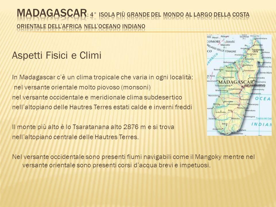 Aspetti Fisici e Climi In Madagascar cè un clima tropicale che varia in ogni località: nel versante orientale molto piovoso (monsoni) nel versante occ