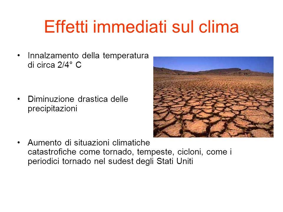 Effetti immediati sul clima Innalzamento della temperatura di circa 2/4° C Diminuzione drastica delle precipitazioni Aumento di situazioni climatiche