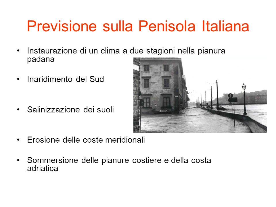 Previsione sulla Penisola Italiana Instaurazione di un clima a due stagioni nella pianura padana Inaridimento del Sud Salinizzazione dei suoli Erosion