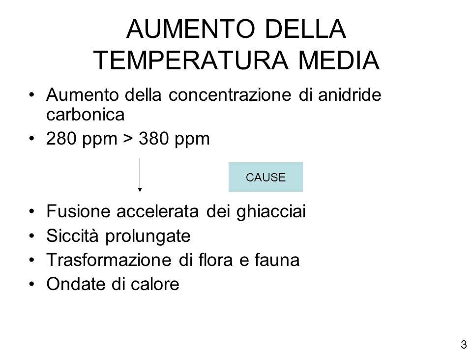 AUMENTO DELLA TEMPERATURA MEDIA Aumento della concentrazione di anidride carbonica 280 ppm > 380 ppm Fusione accelerata dei ghiacciai Siccità prolunga