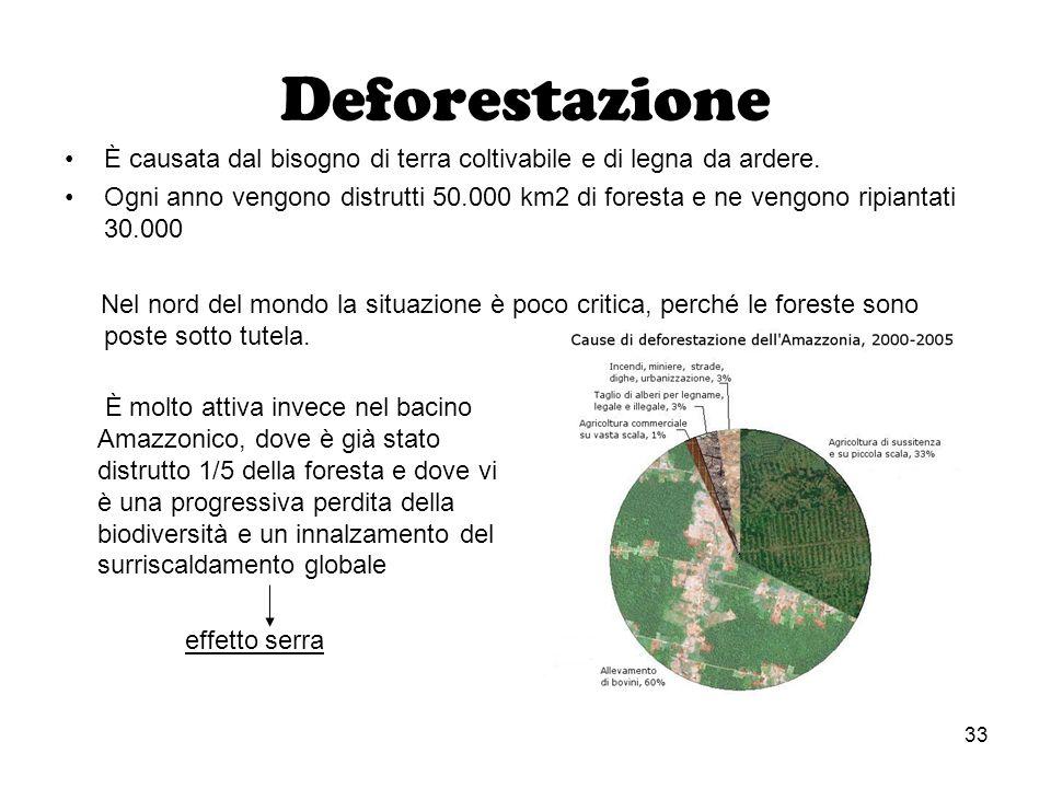 33 Deforestazione È causata dal bisogno di terra coltivabile e di legna da ardere. Ogni anno vengono distrutti 50.000 km2 di foresta e ne vengono ripi
