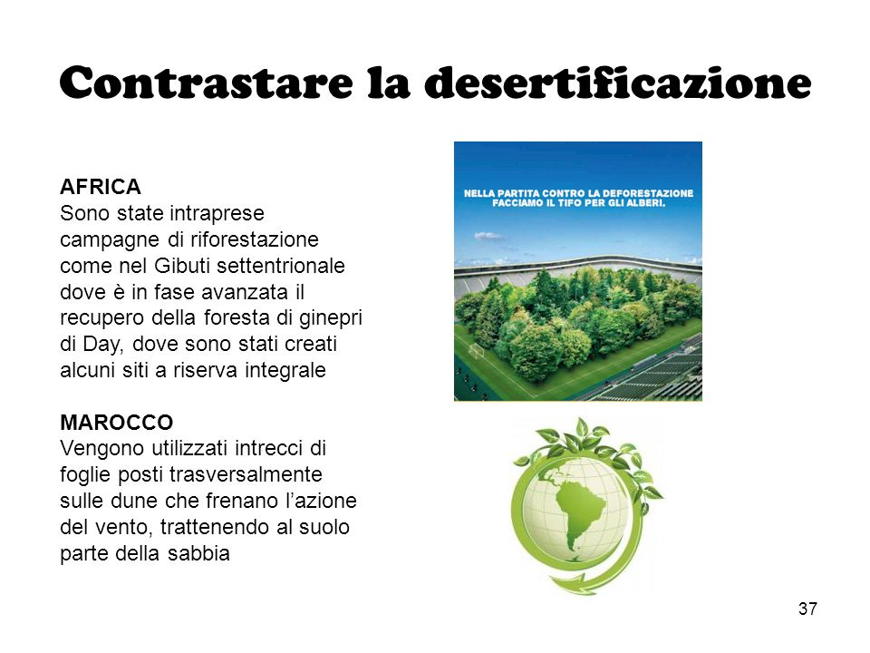 37 Contrastare la desertificazione AFRICA Sono state intraprese campagne di riforestazione come nel Gibuti settentrionale dove è in fase avanzata il r