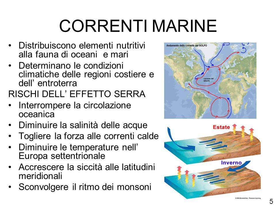 CORRENTI MARINE Distribuiscono elementi nutritivi alla fauna di oceani e mari Determinano le condizioni climatiche delle regioni costiere e dell entro