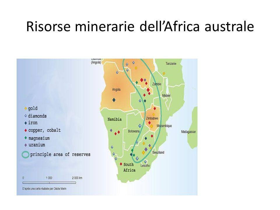 Risorse minerarie dellAfrica australe