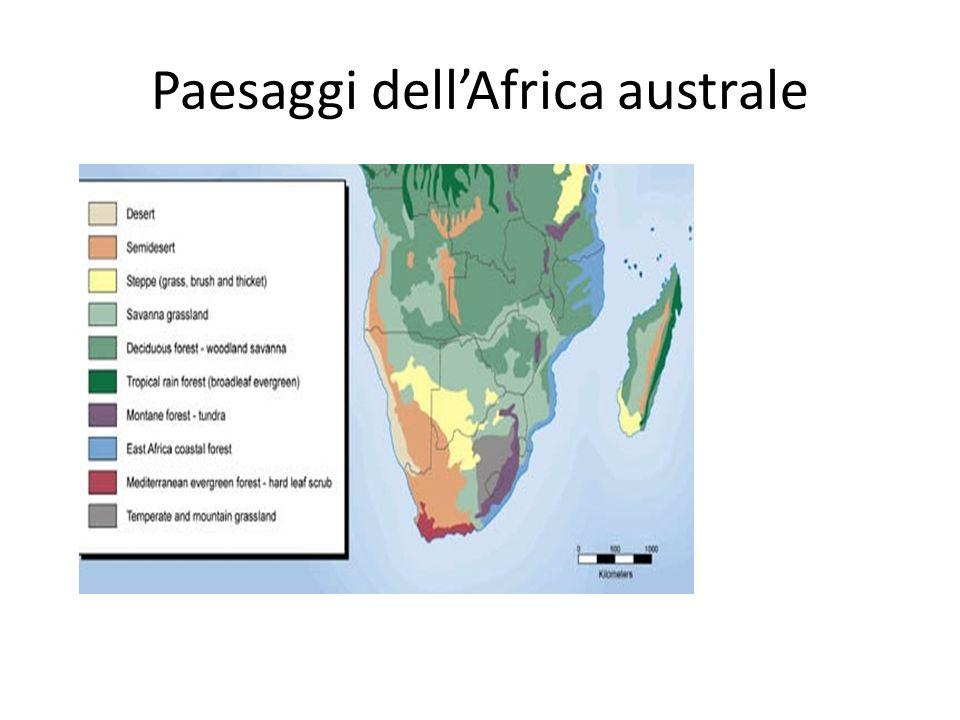Paesaggi dellAfrica australe