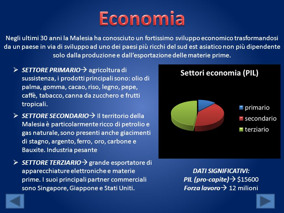 Negli ultimi 30 anni la Malesia ha conosciuto un fortissimo sviluppo economico trasformandosi da un paese in via di sviluppo ad uno dei paesi più ricc