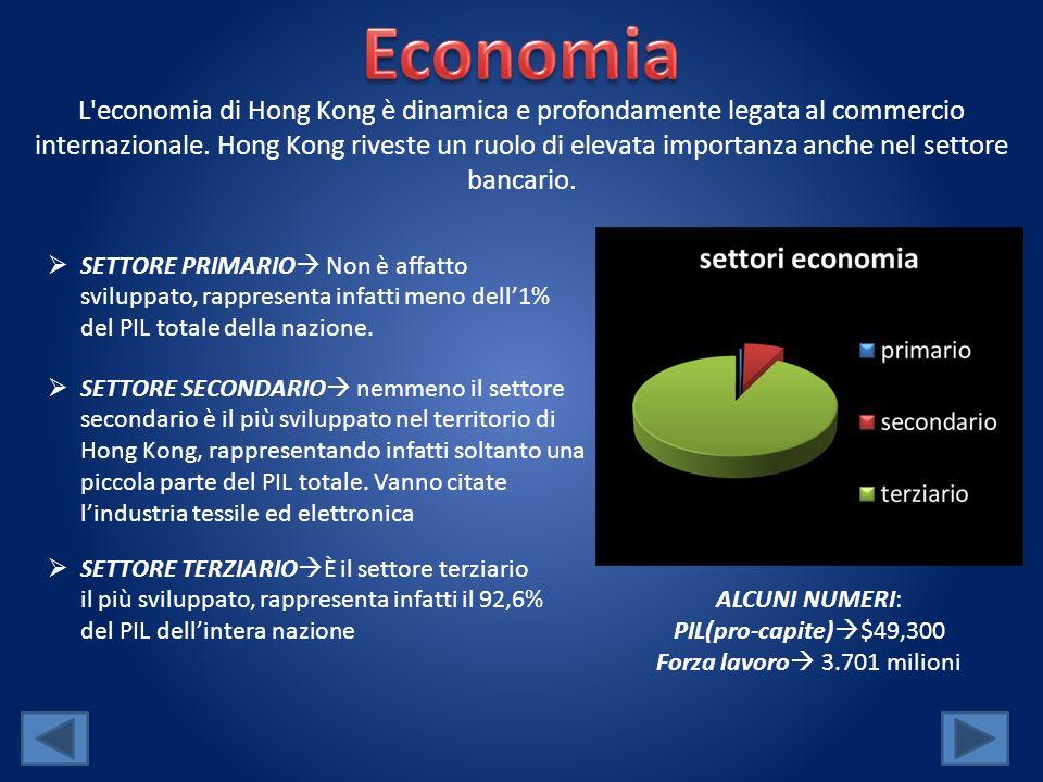 L'economia di Hong Kong è dinamica e profondamente legata al commercio internazionale. Hong Kong riveste un ruolo di elevata importanza anche nel sett