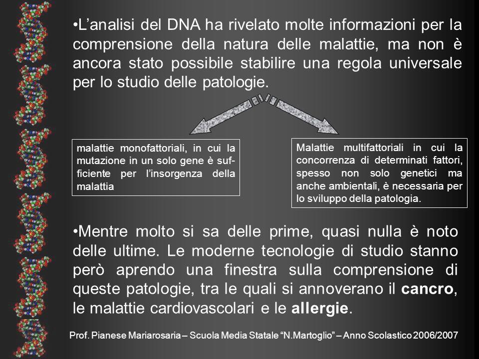 Prof. Pianese Mariarosaria – Scuola Media Statale N.Martoglio – Anno Scolastico 2006/2007 Mentre molto si sa delle prime, quasi nulla è noto delle ult