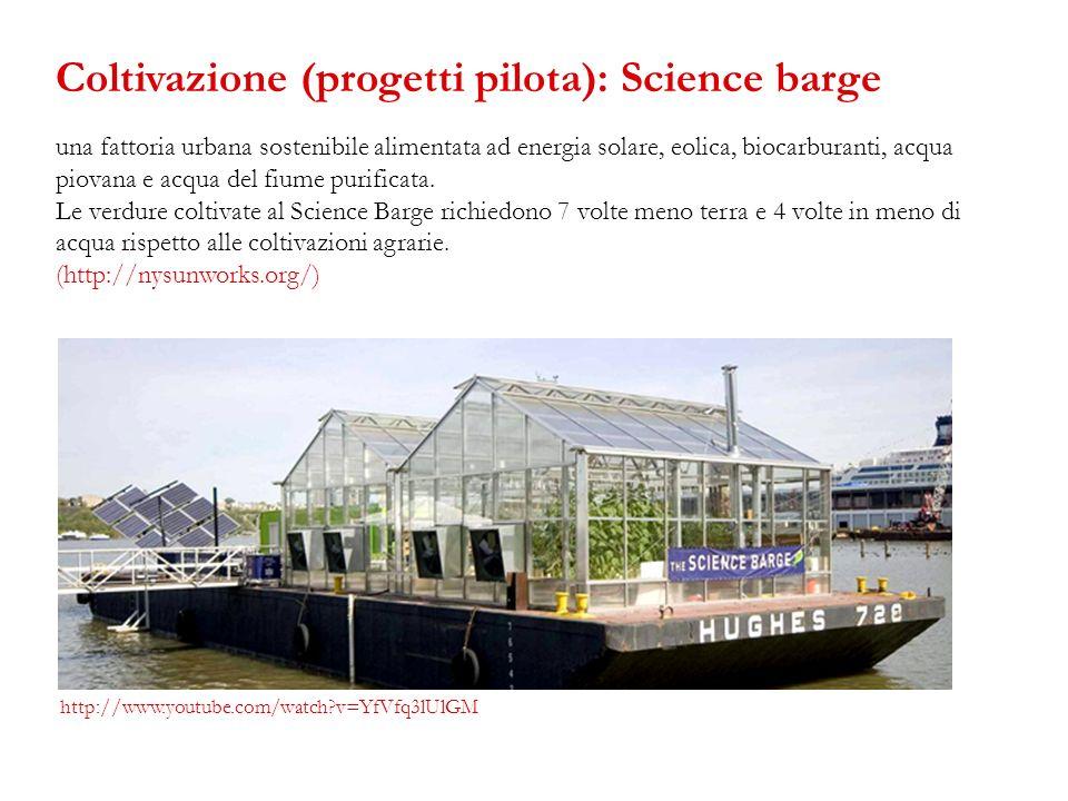 una fattoria urbana sostenibile alimentata ad energia solare, eolica, biocarburanti, acqua piovana e acqua del fiume purificata. Le verdure coltivate
