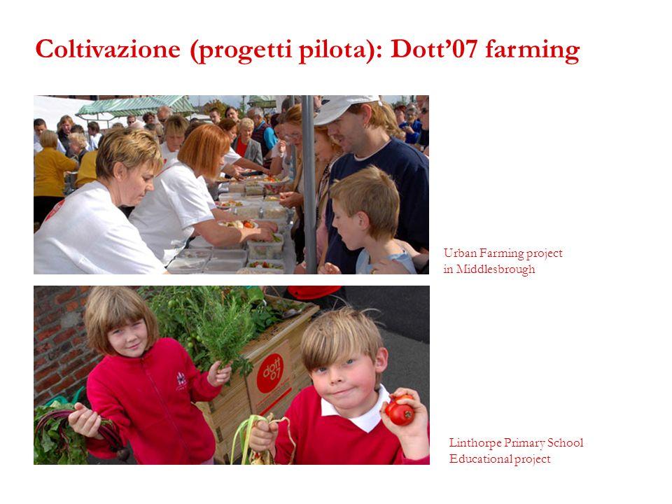 Urban Farming project in Middlesbrough Linthorpe Primary School Educational project Coltivazione (progetti pilota): Dott07 farming