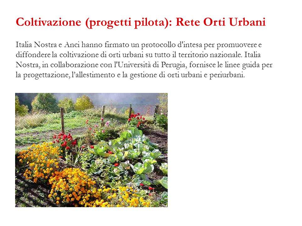 Italia Nostra e Anci hanno firmato un protocollo d'intesa per promuovere e diffondere la coltivazione di orti urbani su tutto il territorio nazionale.