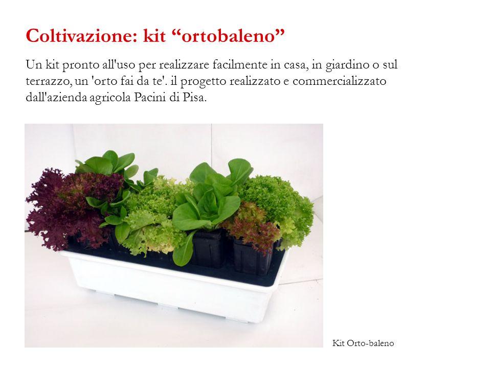 Un kit pronto all'uso per realizzare facilmente in casa, in giardino o sul terrazzo, un 'orto fai da te'. il progetto realizzato e commercializzato da