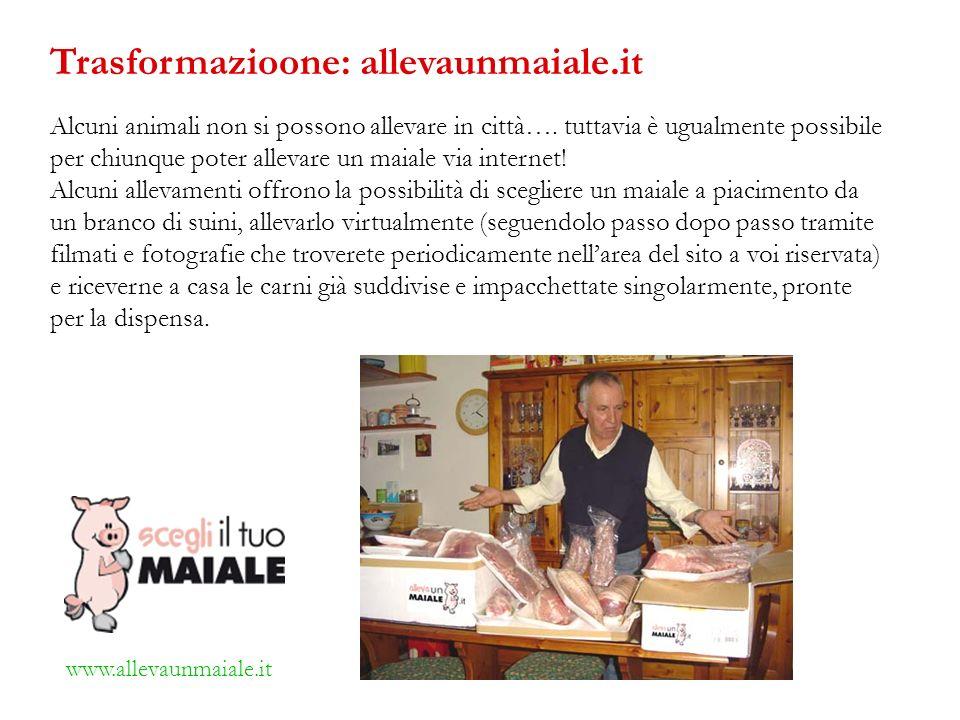 Alcuni animali non si possono allevare in città…. tuttavia è ugualmente possibile per chiunque poter allevare un maiale via internet! Alcuni allevamen