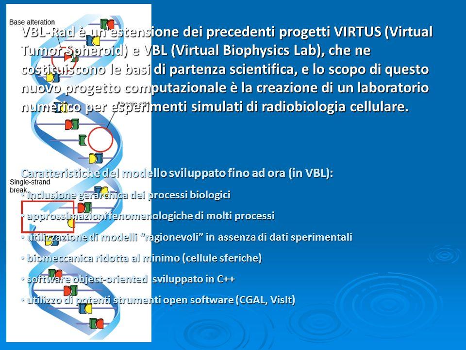VBL-Rad è un estensione dei precedenti progetti VIRTUS (Virtual Tumor Spheroid) e VBL (Virtual Biophysics Lab), che ne costituiscono le basi di partenza scientifica, e lo scopo di questo nuovo progetto computazionale è la creazione di un laboratorio numerico per esperimenti simulati di radiobiologia cellulare.