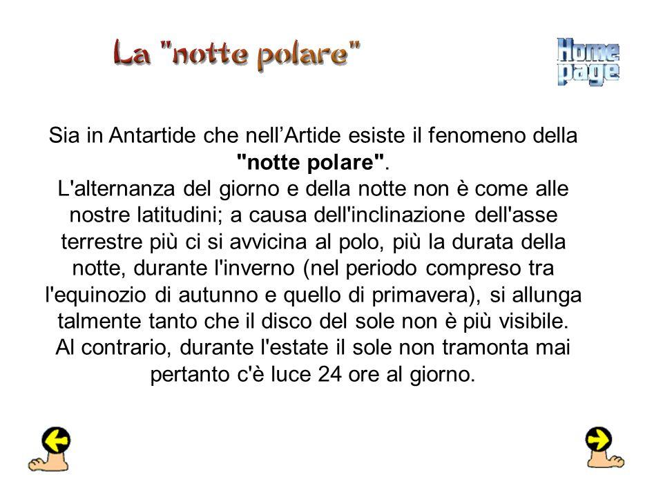 Sia in Antartide che nellArtide esiste il fenomeno della