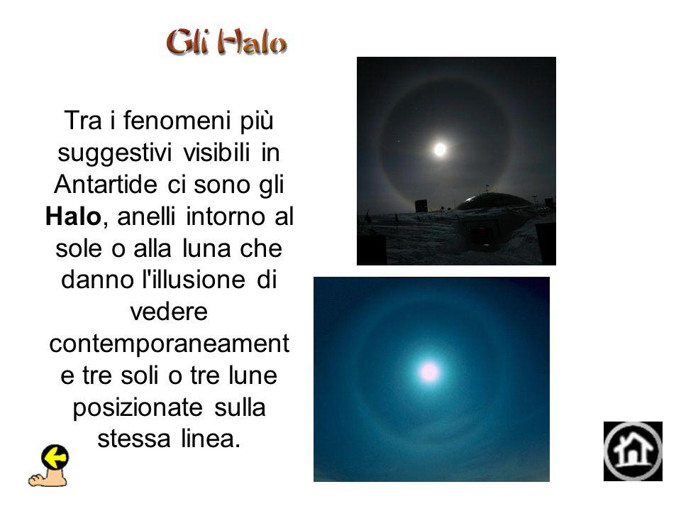 Tra i fenomeni più suggestivi visibili in Antartide ci sono gli Halo, anelli intorno al sole o alla luna che danno l illusione di vedere contemporaneament e tre soli o tre lune posizionate sulla stessa linea.