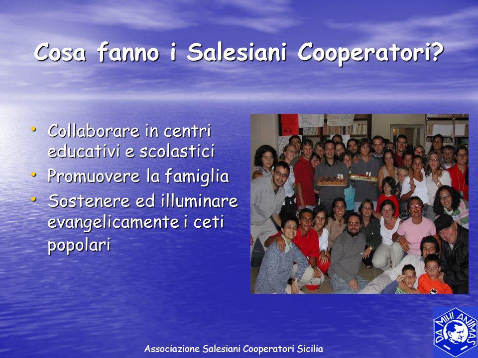 Collaborare in centri educativi e scolastici Collaborare in centri educativi e scolastici Promuovere la famiglia Promuovere la famiglia Sostenere ed i