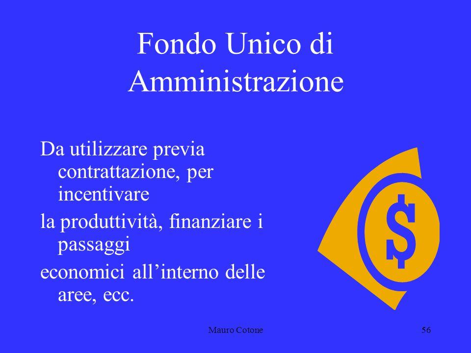 Mauro Cotone55 Terminali associativi Dopo listituzione delle R.S.U., è venuto a cessare lorgano di diretta rappresentanza sindacale nel luogo di lavoro (R.S.A.).