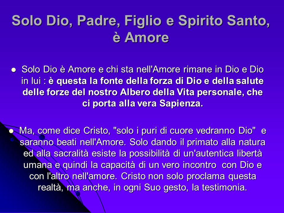 Solo Dio, Padre, Figlio e Spirito Santo, è Amore Solo Dio è Amore e chi sta nell'Amore rimane in Dio e Dio in lui : è questa la fonte della forza di D