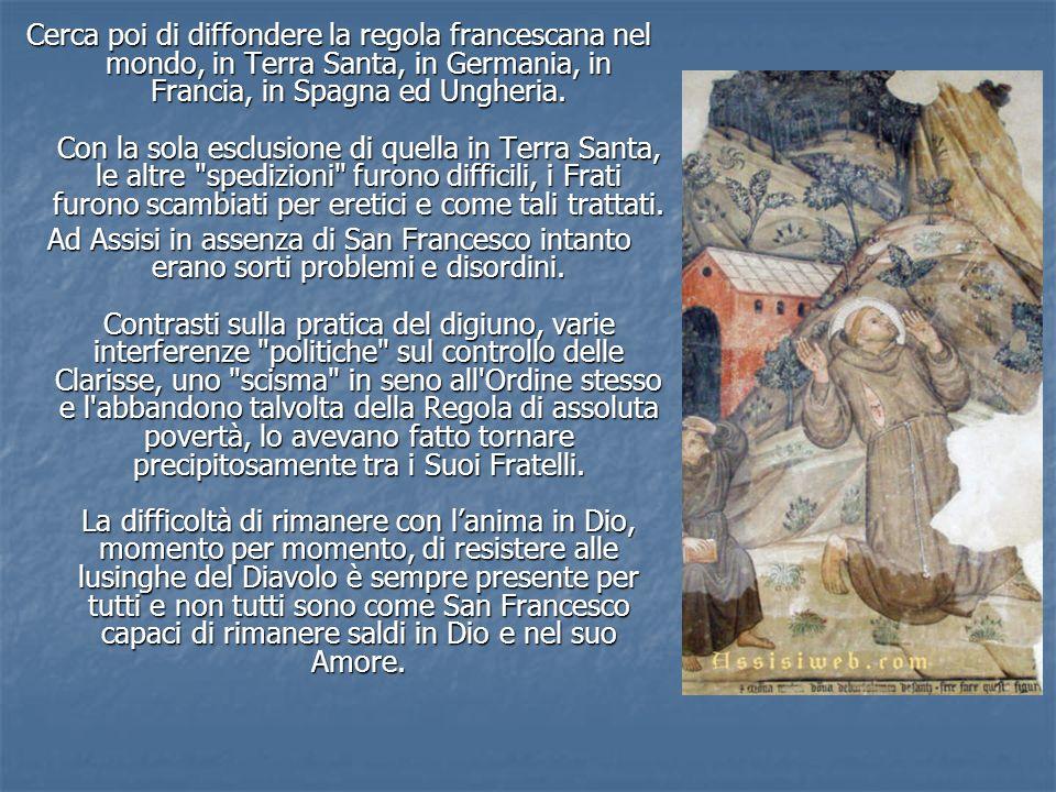 Cerca poi di diffondere la regola francescana nel mondo, in Terra Santa, in Germania, in Francia, in Spagna ed Ungheria. Con la sola esclusione di que