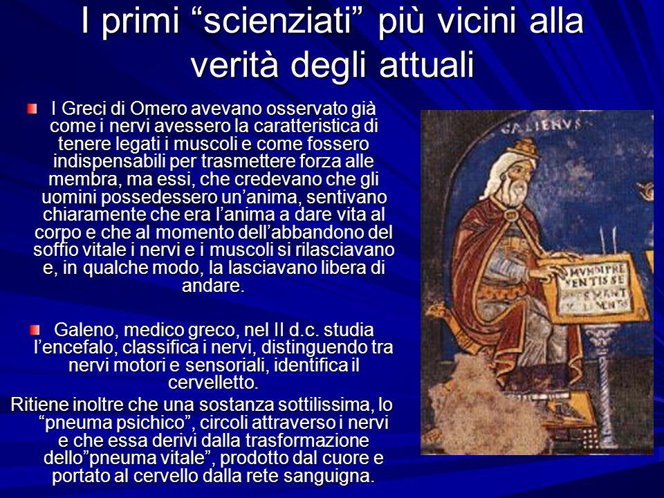 I primi scienziati più vicini alla verità degli attuali I Greci di Omero avevano osservato già come i nervi avessero la caratteristica di tenere legat