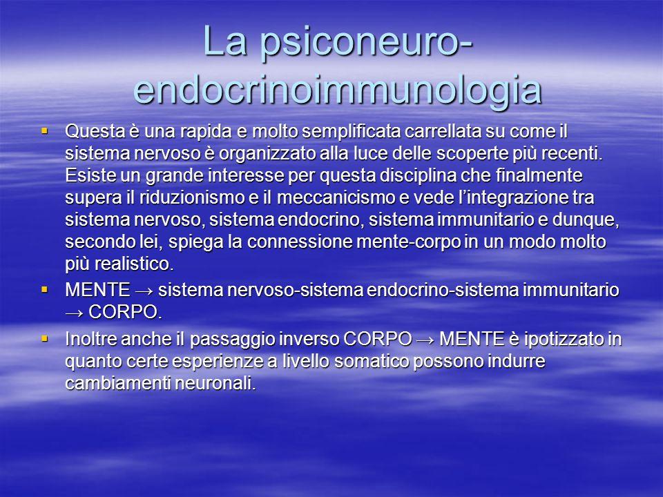 La psiconeuro- endocrinoimmunologia Questa è una rapida e molto semplificata carrellata su come il sistema nervoso è organizzato alla luce delle scope