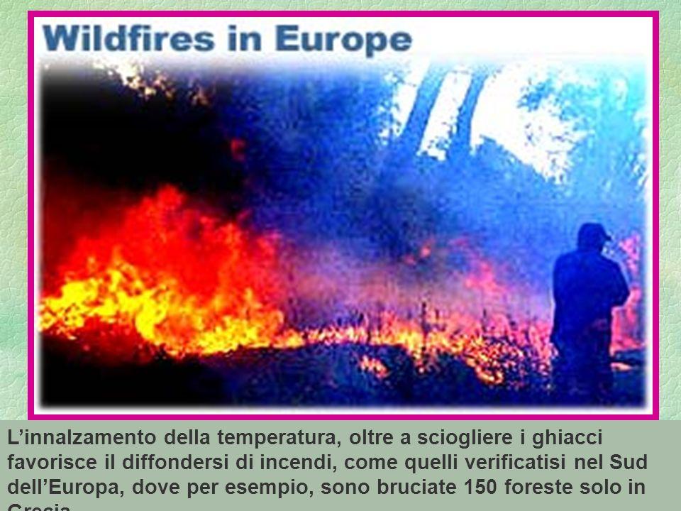 81 Linnalzamento della temperatura, oltre a sciogliere i ghiacci favorisce il diffondersi di incendi, come quelli verificatisi nel Sud dellEuropa, dove per esempio, sono bruciate 150 foreste solo in Grecia.