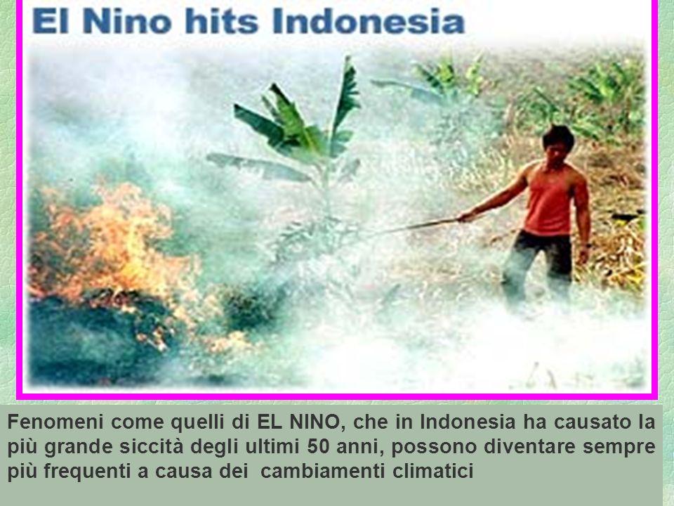 82 Fenomeni come quelli di EL NINO, che in Indonesia ha causato la più grande siccità degli ultimi 50 anni, possono diventare sempre più frequenti a c