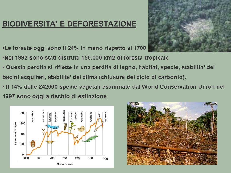 86 BIODIVERSITA E DEFORESTAZIONE Le foreste oggi sono il 24% in meno rispetto al 1700 Nel 1992 sono stati distrutti 150.000 km2 di foresta tropicale Questa perdita si riflette in una perdita di legno, habitat, specie, stabilita dei bacini acquiferi, stabilita del clima (chiusura del ciclo di carbonio).