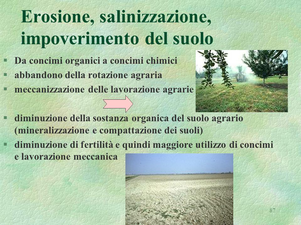87 Erosione, salinizzazione, impoverimento del suolo §Da concimi organici a concimi chimici §abbandono della rotazione agraria §meccanizzazione delle