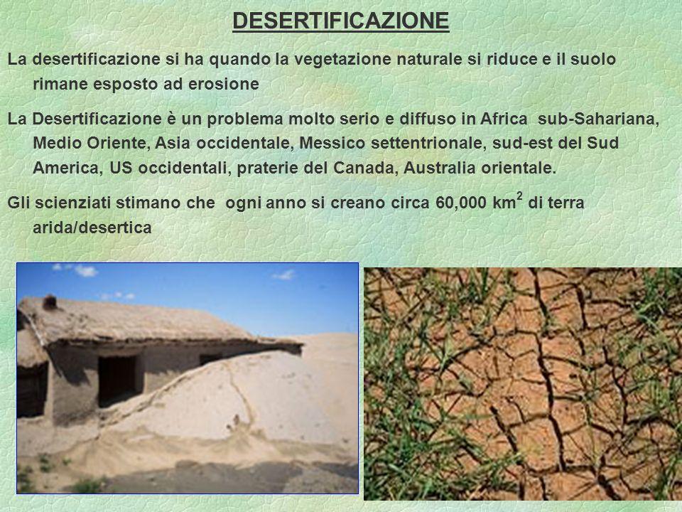 88 DESERTIFICAZIONE La desertificazione si ha quando la vegetazione naturale si riduce e il suolo rimane esposto ad erosione La Desertificazione è un problema molto serio e diffuso in Africa sub-Sahariana, Medio Oriente, Asia occidentale, Messico settentrionale, sud-est del Sud America, US occidentali, praterie del Canada, Australia orientale.