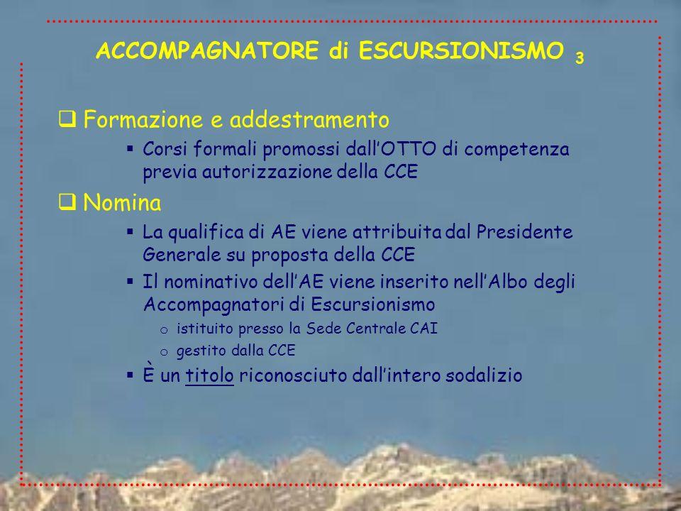 Formazione e addestramento Corsi formali promossi dallOTTO di competenza previa autorizzazione della CCE Nomina La qualifica di AE viene attribuita da