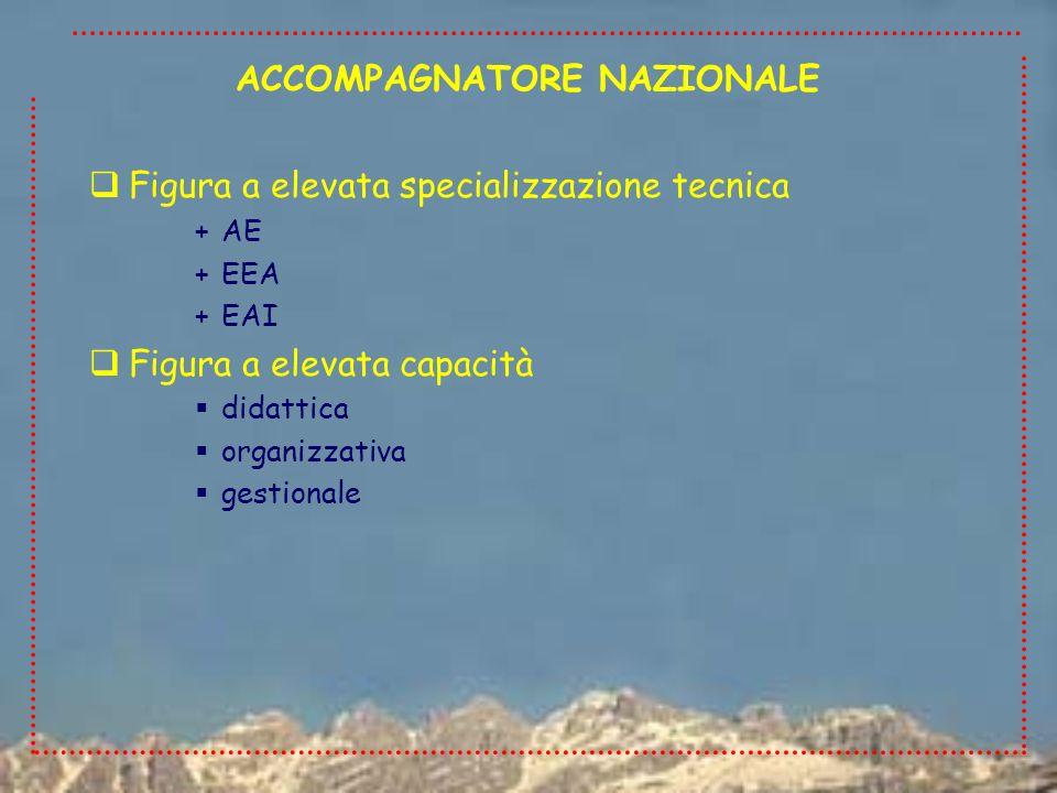 Figura a elevata specializzazione tecnica +AE +EEA +EAI Figura a elevata capacità didattica organizzativa gestionale ACCOMPAGNATORE NAZIONALE