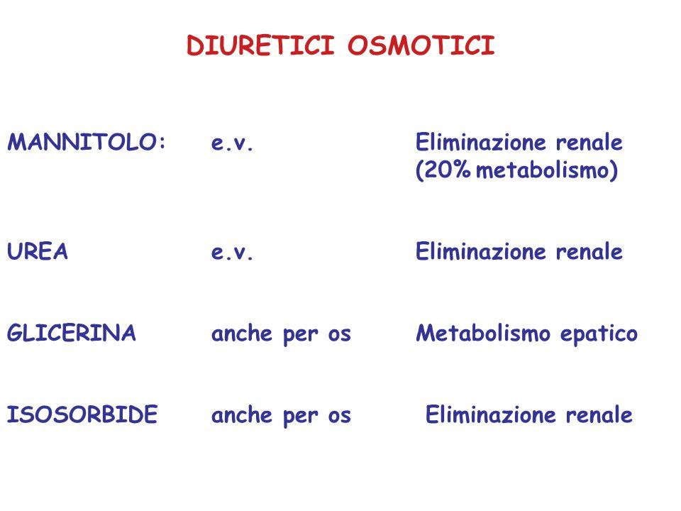 DIURETICI OSMOTICI MANNITOLO: e.v.Eliminazione renale (20% metabolismo) UREAe.v.Eliminazione renale GLICERINAanche per osMetabolismo epatico ISOSORBID