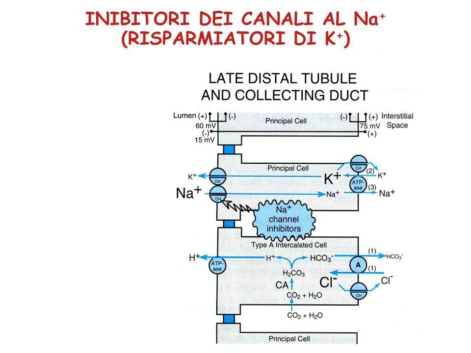 INIBITORI DEI CANALI AL Na + (RISPARMIATORI DI K + )
