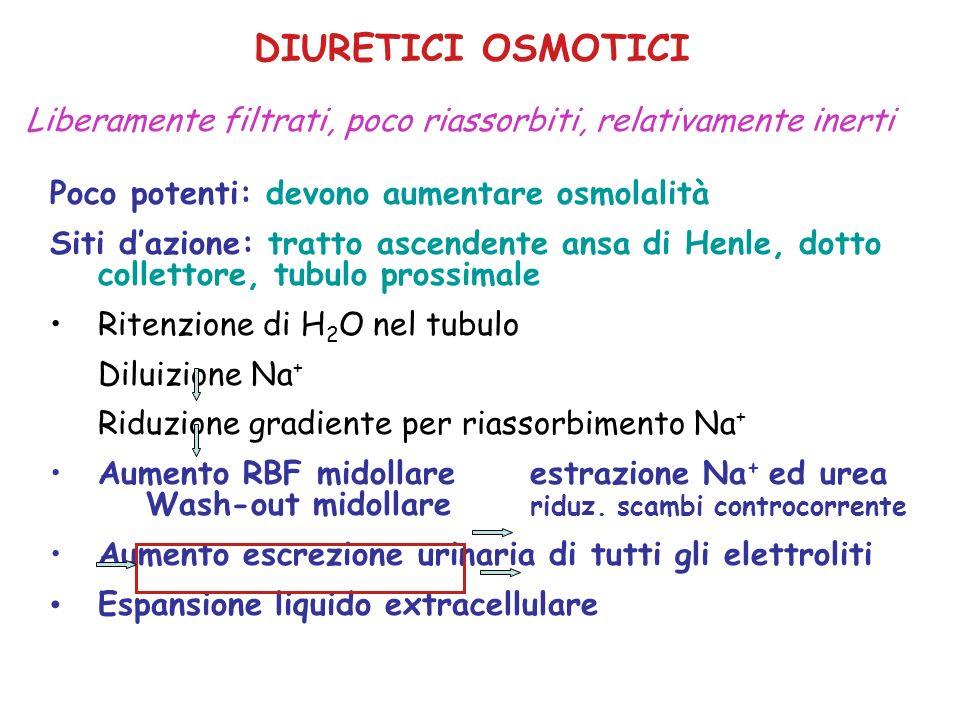 DIURETICI OSMOTICI MANNITOLO: e.v.Eliminazione renale (20% metabolismo) UREAe.v.Eliminazione renale GLICERINAanche per osMetabolismo epatico ISOSORBIDEanche per os Eliminazione renale