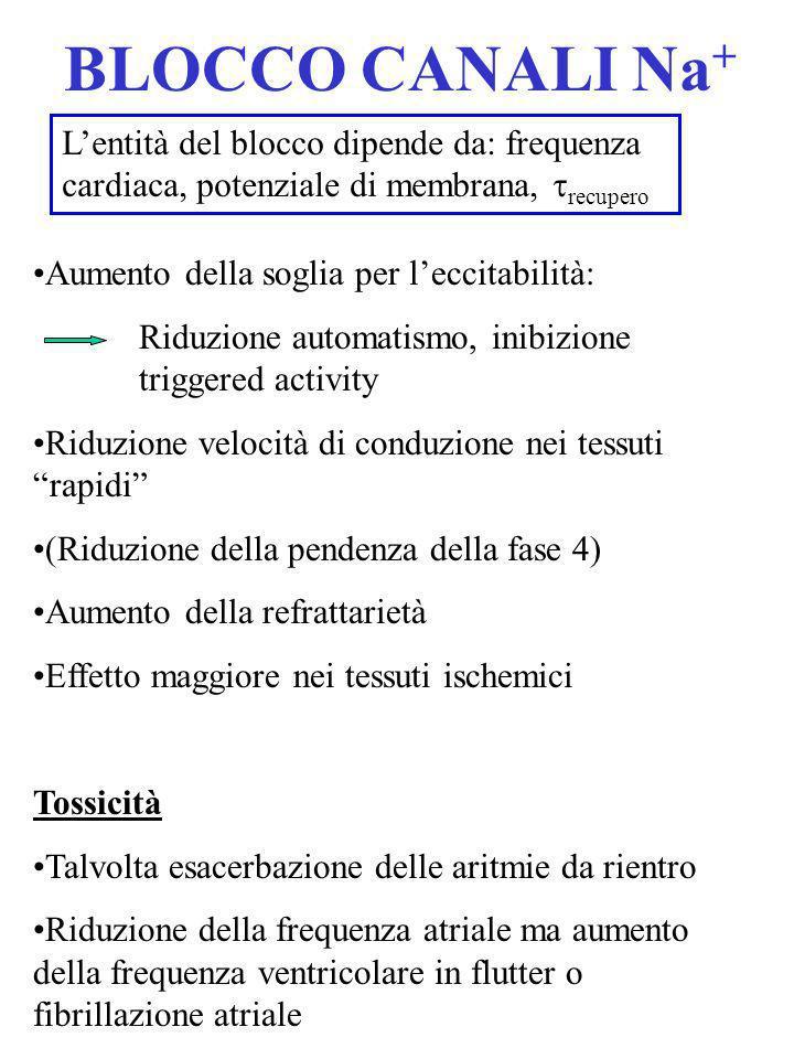 BLOCCO CANALI Na + Aumento della soglia per leccitabilità: Riduzione automatismo, inibizione triggered activity Riduzione velocità di conduzione nei t