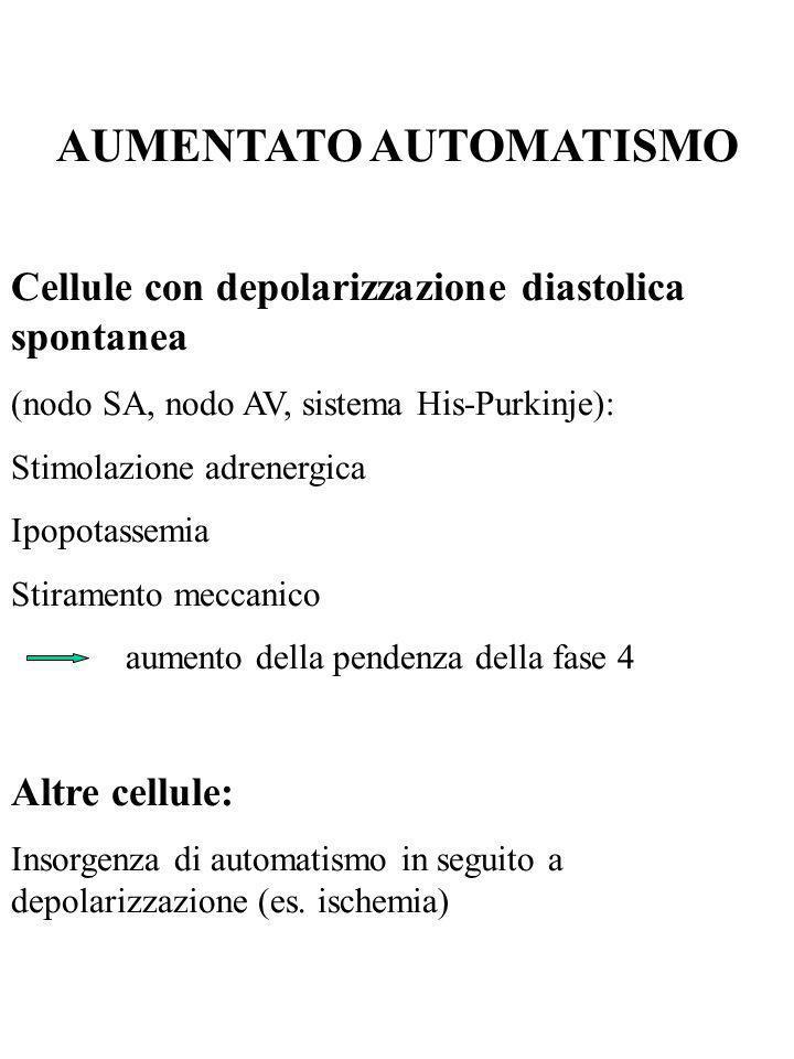 AUMENTATO AUTOMATISMO Cellule con depolarizzazione diastolica spontanea (nodo SA, nodo AV, sistema His-Purkinje): Stimolazione adrenergica Ipopotassem