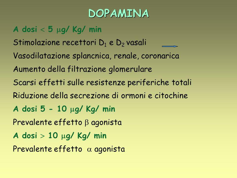 DOPAMINA A dosi 5 g/ Kg/ min Stimolazione recettori D 1 e D 2 vasali Vasodilatazione splancnica, renale, coronarica Aumento della filtrazione glomerulare Scarsi effetti sulle resistenze periferiche totali Riduzione della secrezione di ormoni e citochine A dosi 5 - 10 g/ Kg/ min Prevalente effetto agonista A dosi 10 g/ Kg/ min Prevalente effetto agonista
